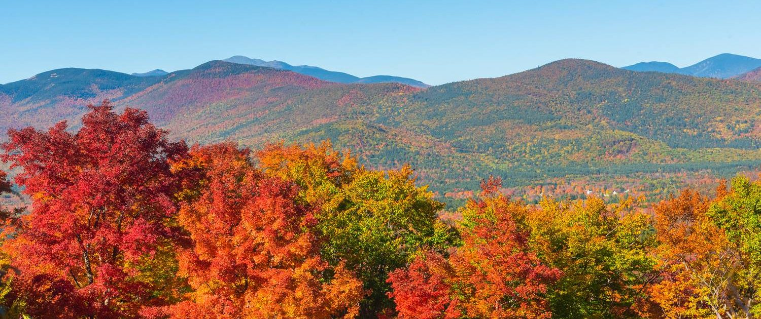 Ward Law Group Header Image Fall in the New Hampshire White Mountains