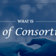 What-Is-Loss-of-Consortium