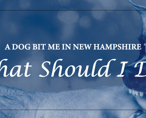 A-Dog-Bit-Me-In-New-Hampshire-What-Should-I-Do
